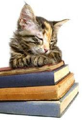tabbyonbooks2
