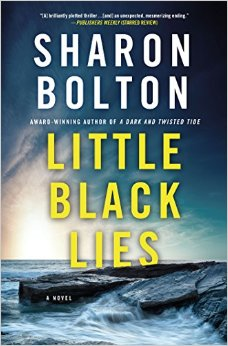 Little Black Lies jacket