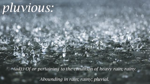 pluvious