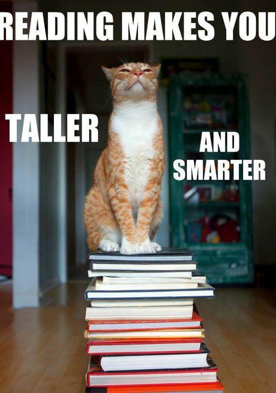 makes you taller