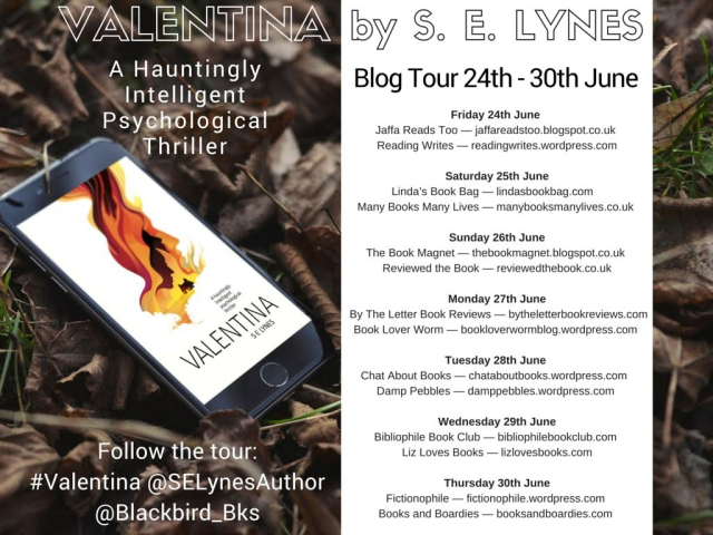 Valentina blog tour