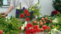 close-up-of-floral-designer-arranging-beautiful-mixed-flower-bouquet_4_xt4on5kg__s0000