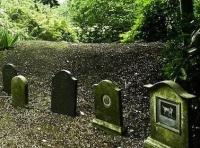 pet-cemetery