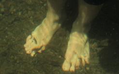 asa-feet