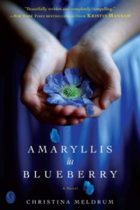 amaryllis-in-blueberry