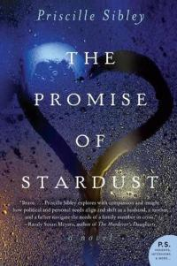 the-promise-of-stardust