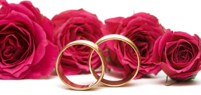 wedding-rings-and-roses